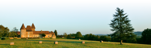 chateau-la-bourgonie-chateau-png